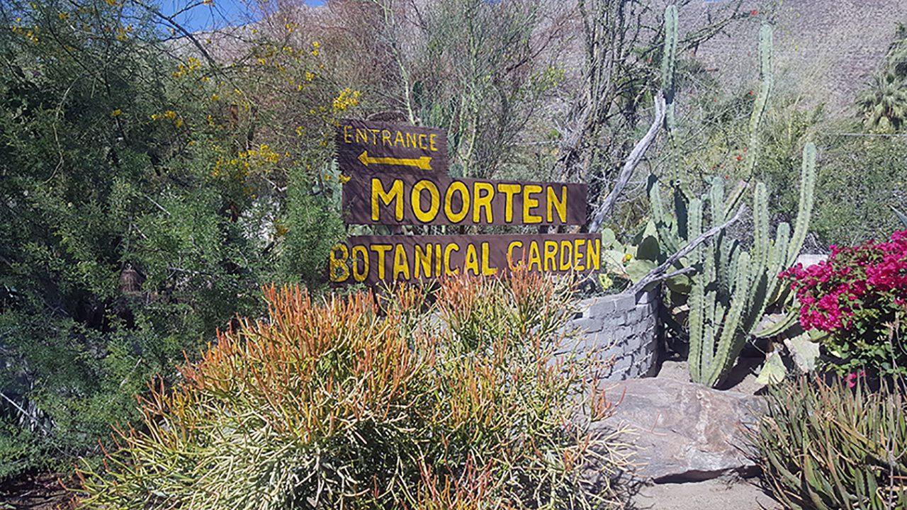 moorten botanical garden palm springs