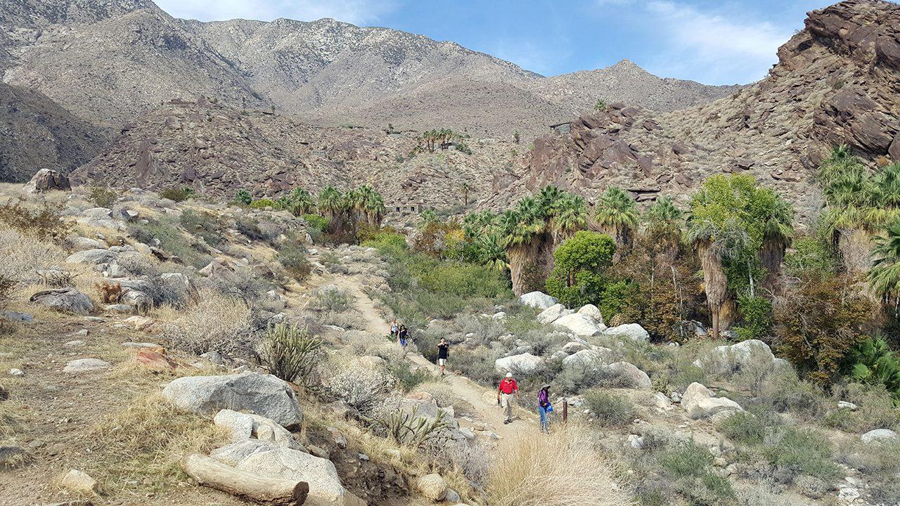 andreas canyon