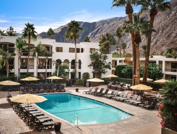 Palm Mountain pool