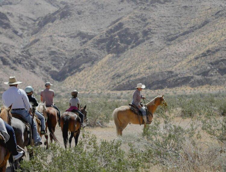 group riding horseback