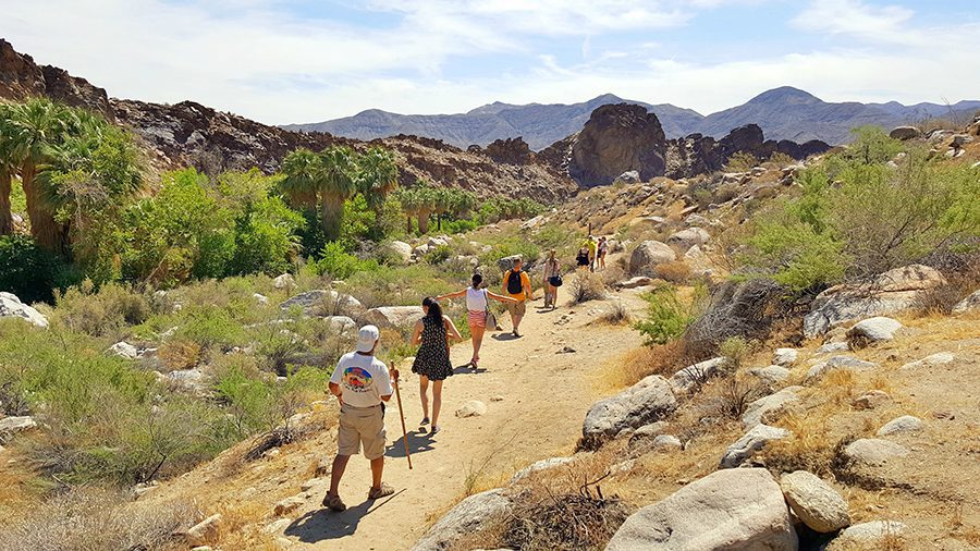 hiking in Indian Canyons Palm Springs