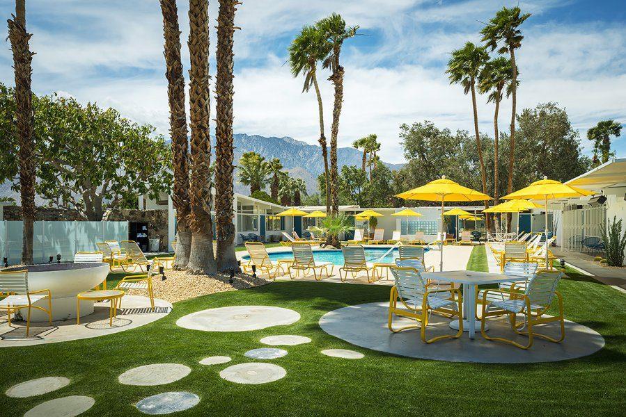 monkey tree hotel palm springs
