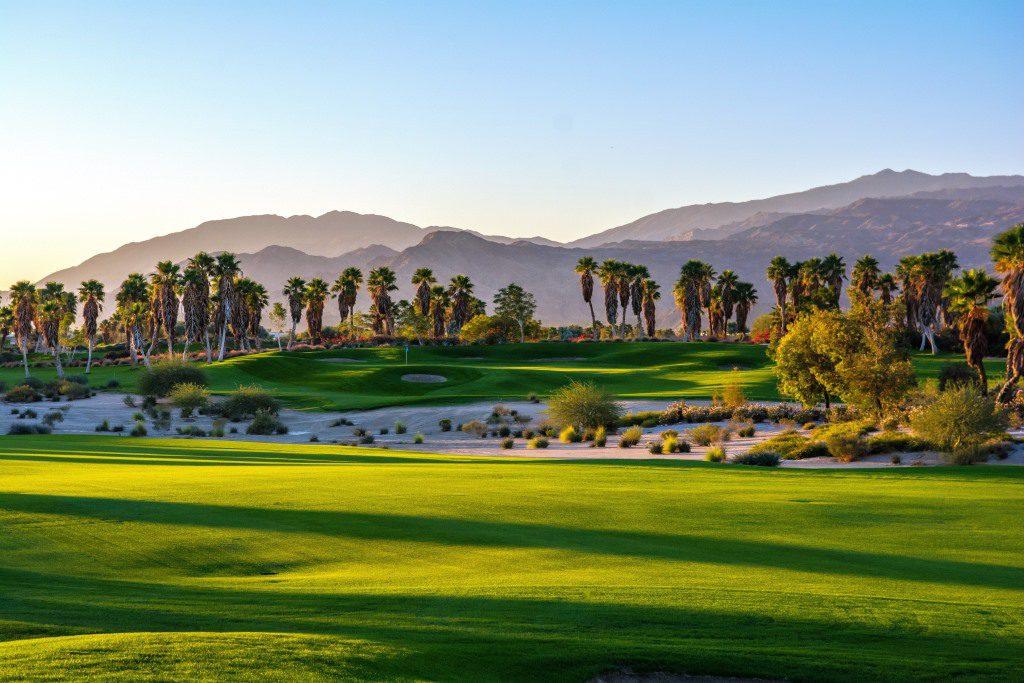 escena golf