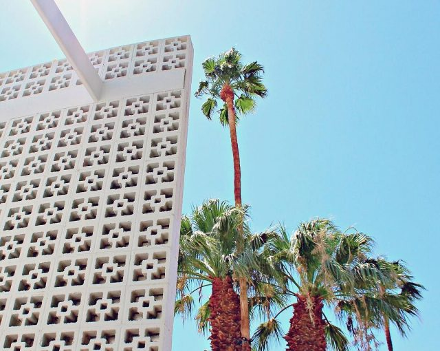breeze block and palm trees