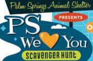 Palm Springs Animal Shelter flyer